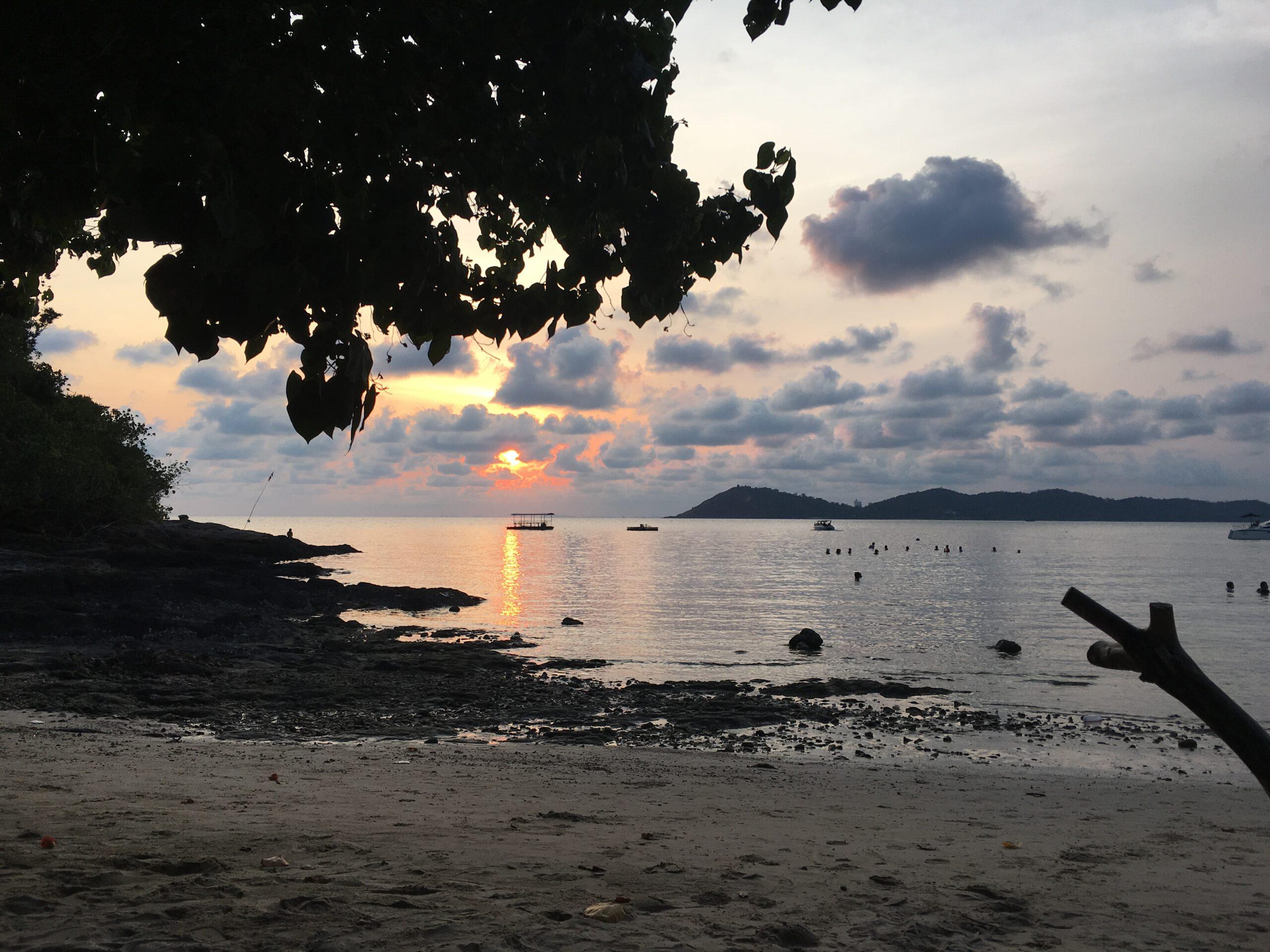 サメット島 アオプラオ