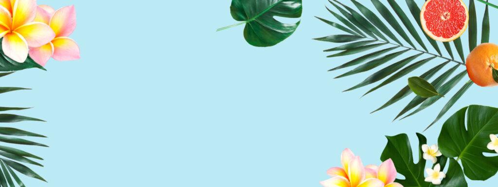 top-slider-3_plants-bkgd